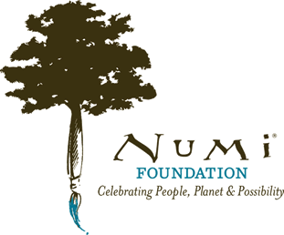 graphic of a paintbrush topped with a tree, words Numi Foundation