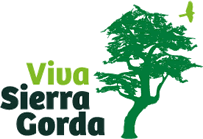 tall tree graphic, words: Viva Sierra Gorda