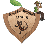 artwork depicting a badge with a ranger sitting on it